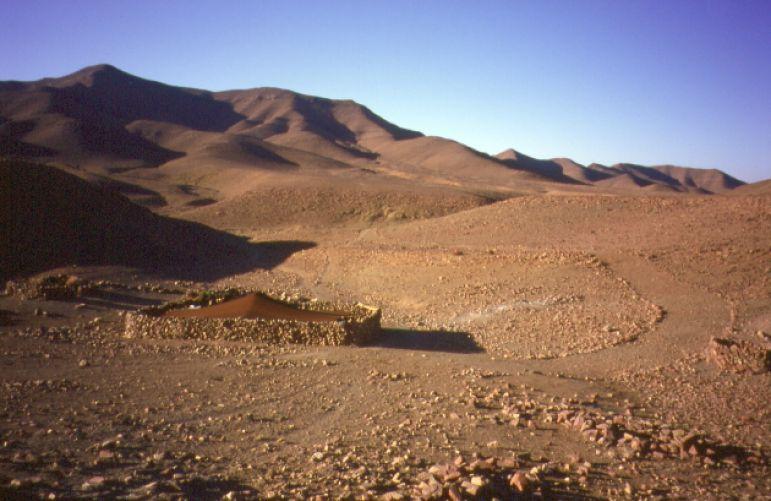Tente berbère dans l'Hamada du Draa