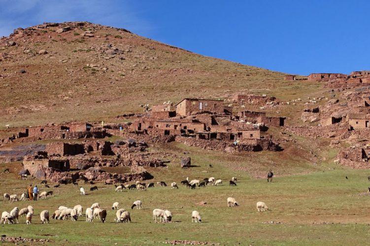 Berger dans la vallée du Toubkal