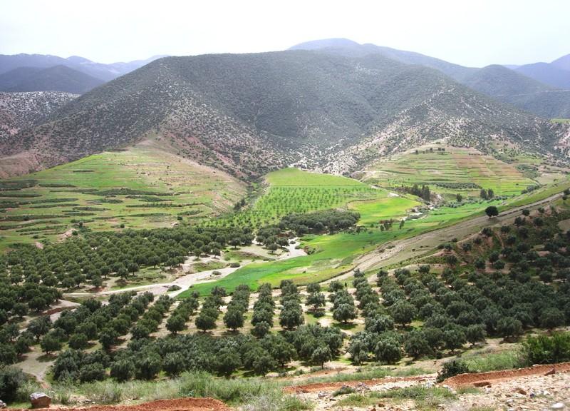 Vallée d'Amizmiz